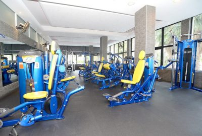 hoist gym fitness equipment