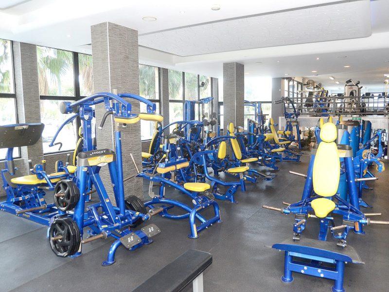 golds gym fitness equipment - 800×600